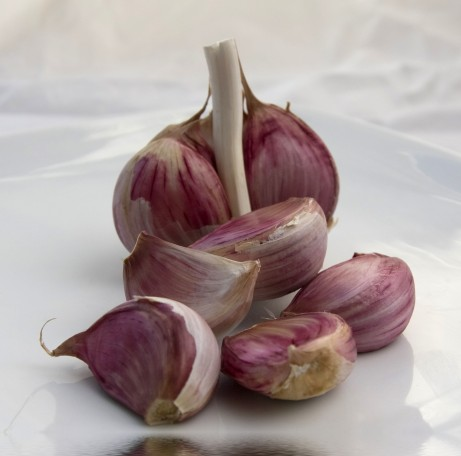 Garlic cloves - Mike Parker/PhotoXpress