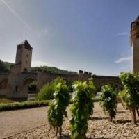 Black wine and secret gardens in Cahors