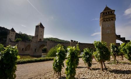 Vines next to the Pont Valentré, Cahors: PhotoXpress