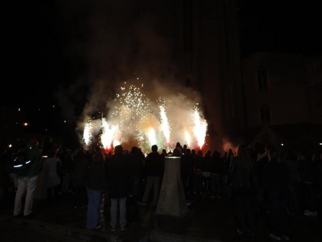 Albi - Nuit Pastel Fireworks