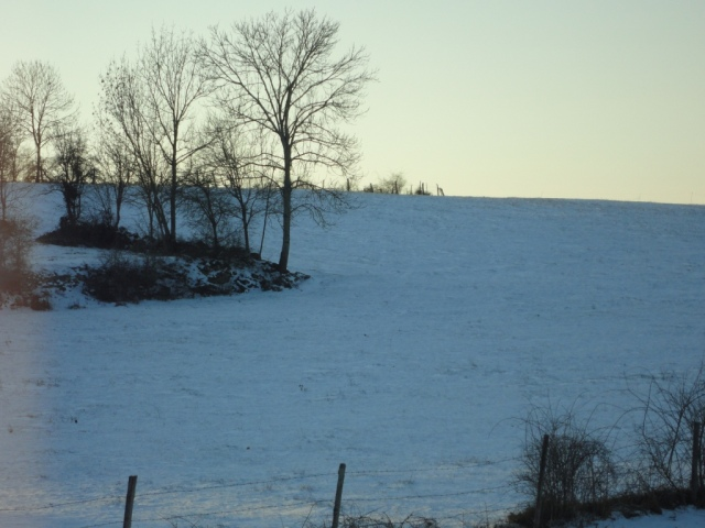 Wintry view behind our house in 2012