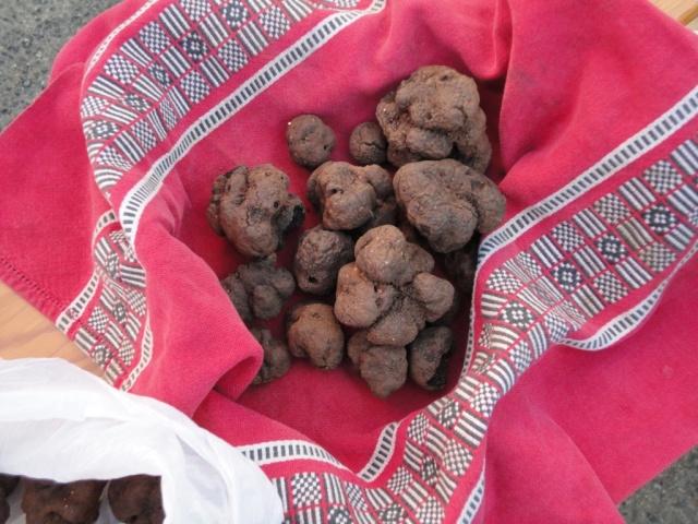 Limogne - truffles