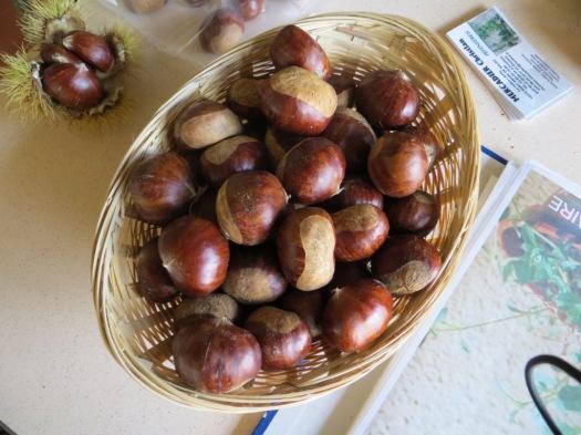 Marrons de Laguépie - one of the 100 or so varieties