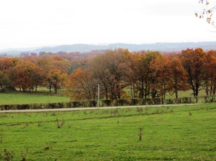 Teysseroles - Autumn view Nov 12
