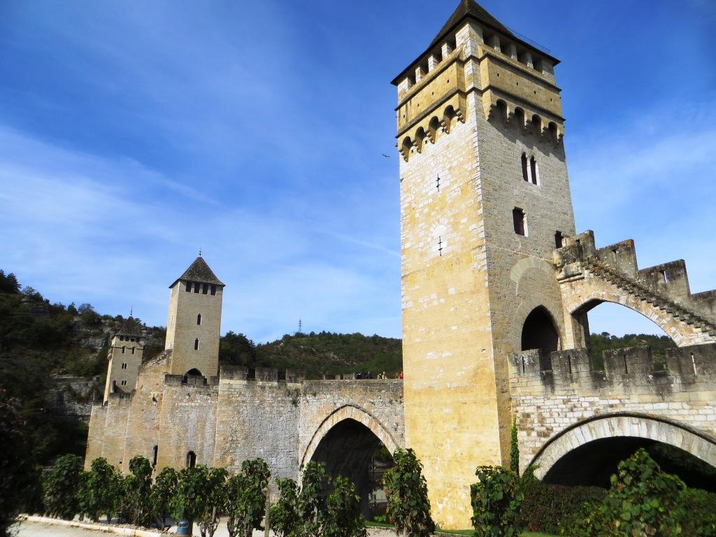 Vineyard next to Pont Valentré