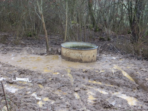 Water trough surrounded by a sea of mud