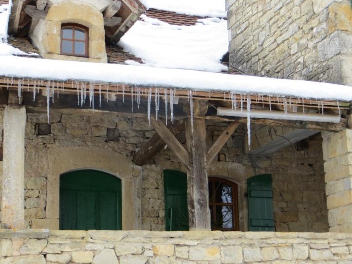 Winter 2013 - icicle-ridden bolet