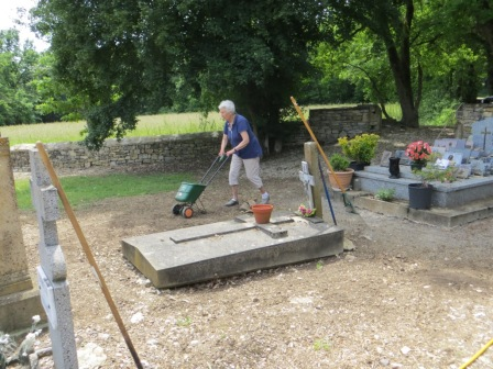 Re-seeding the grass