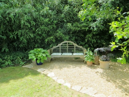 Terri's garden 2