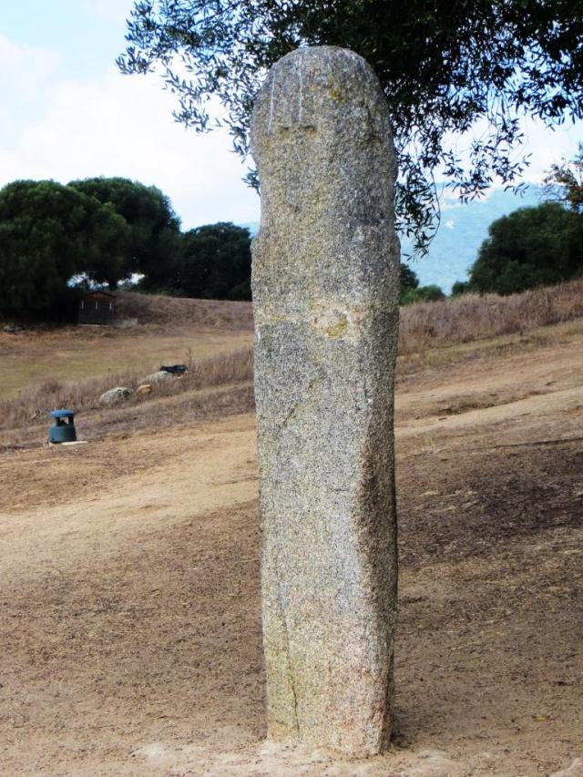 Haunting early menhir with dagger just visible on LH side