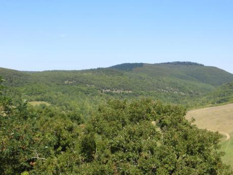 View towards la fôret de Grésigne