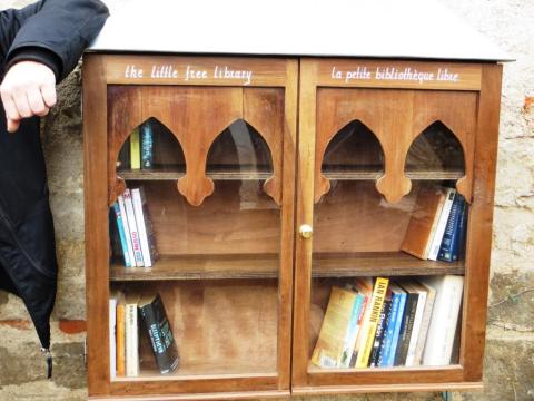 Hand-made cabinet housing the Little Free Library