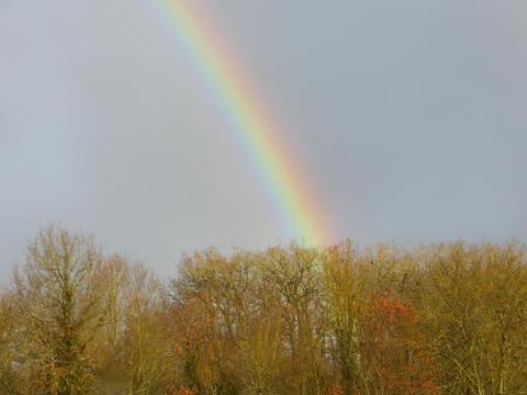 A vivid rainbow I snapped last week