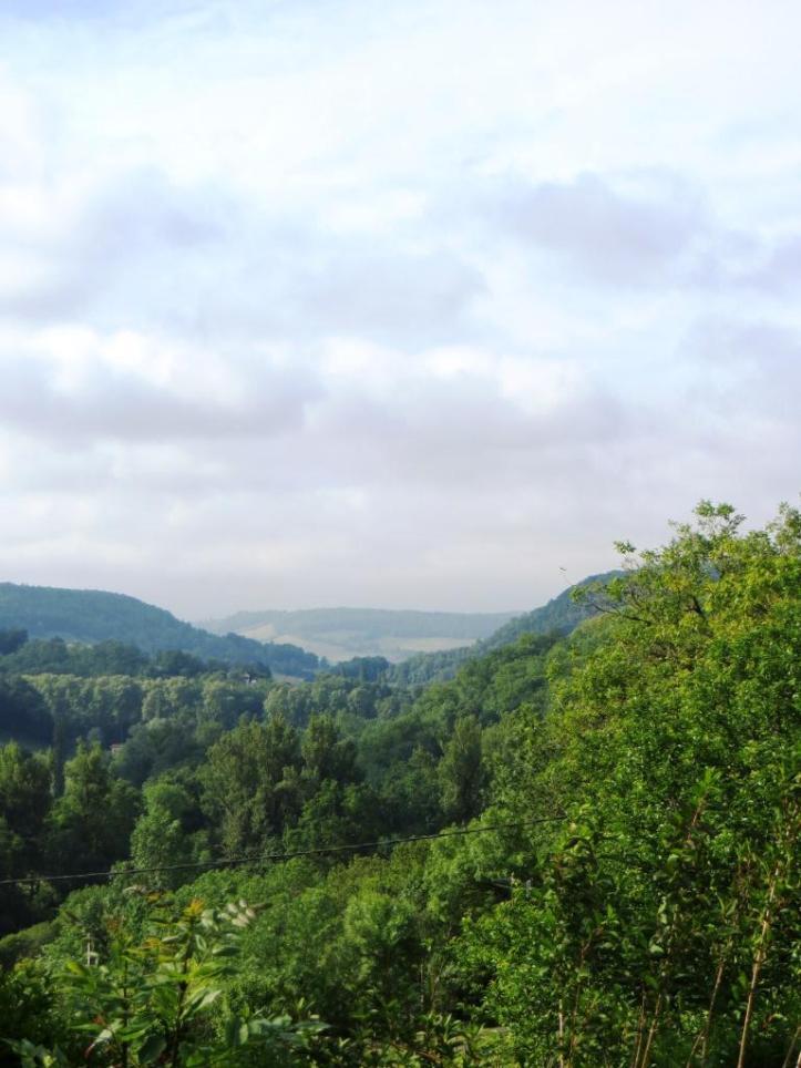 Bonnette Valley view