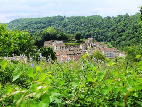 Caylus viewed from the hill opposite