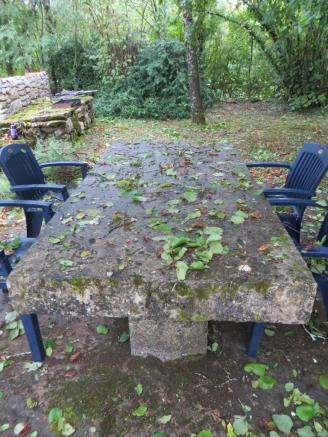 Stone table covered in leaves