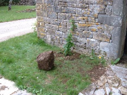 Boulder removed during the planting of the climbing hydrangea behind