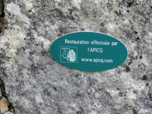 Caylus - Apicq